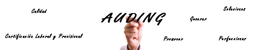 alargado_mano_auding